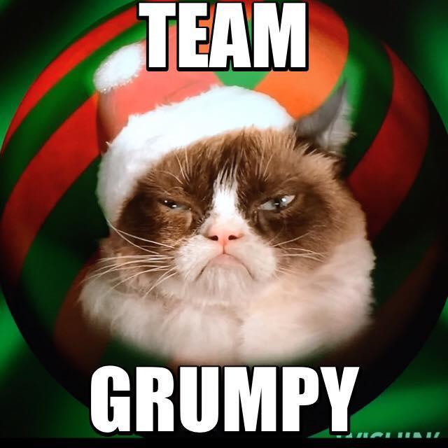 Grumpy Cat Memes Team Grumpy
