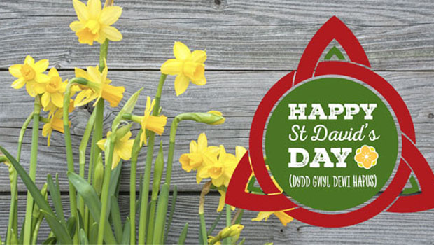 Happy St David's Day Wishes Message Image