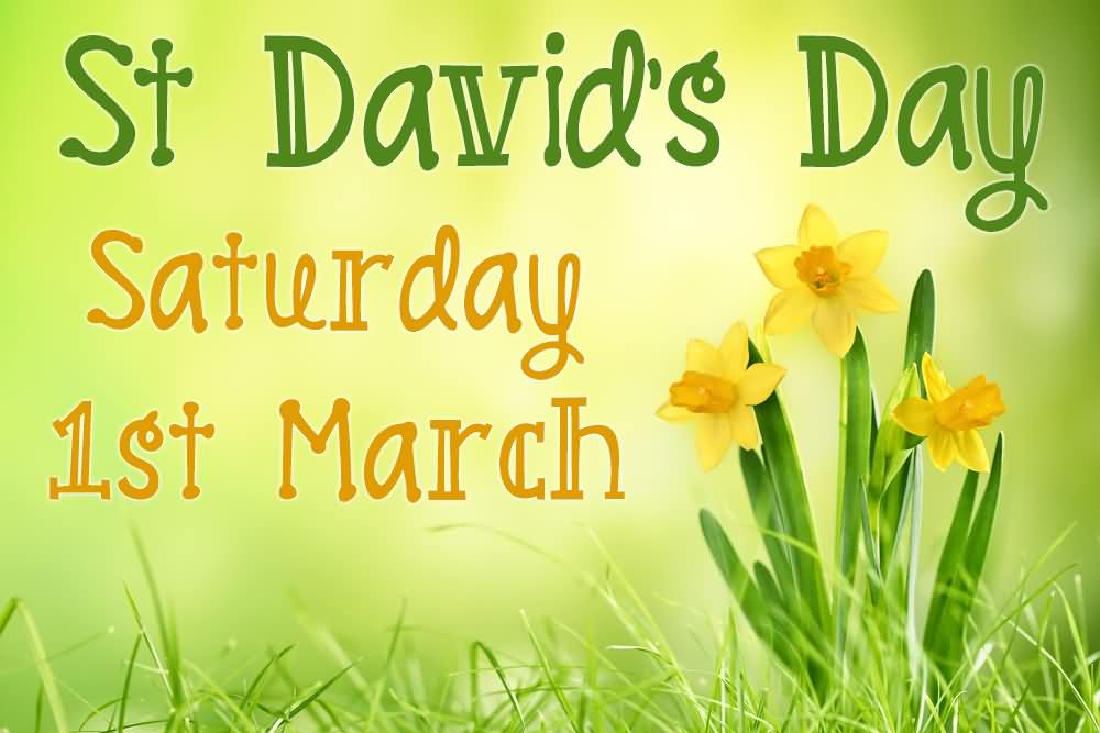 Have Wonderful St David's Day Wishes Message Image