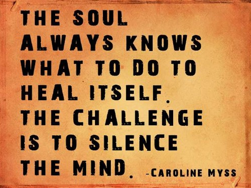 Healing Quotes the soul always knows what to do to heal itself the challenge