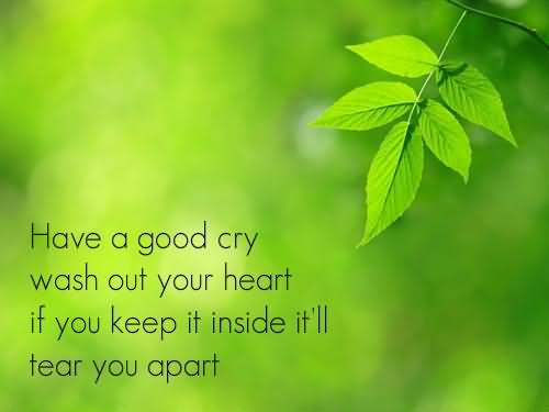 Healing Sayings have a good cry wash out your