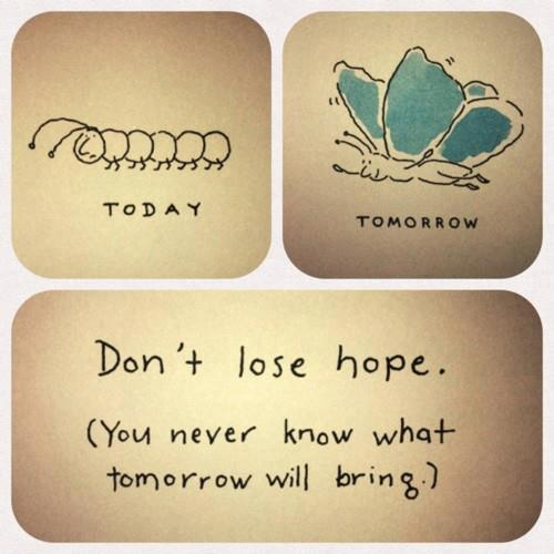 Hope Quotes today don't lose hope you never know what tomorrow will