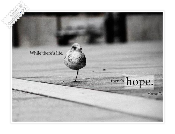 Hope Quotes while there's life there's hope