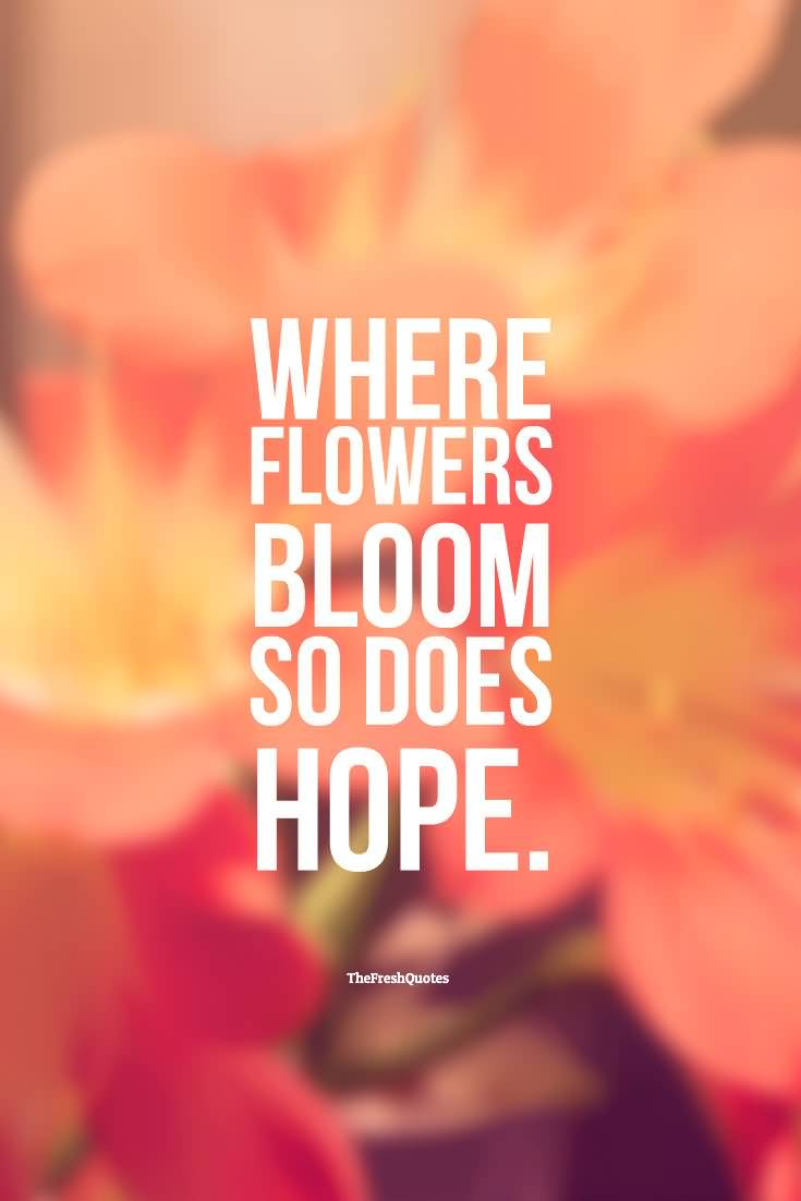 Hope Sayings where flowers bloom so does hope