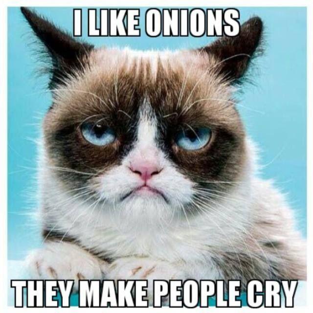 I Like Onions Grumpy Cat Memes