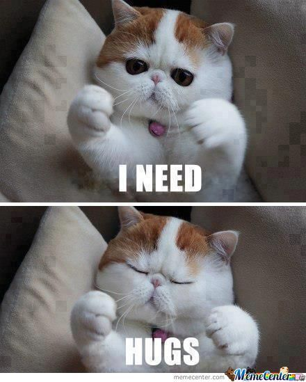I need hugs Hug Meme