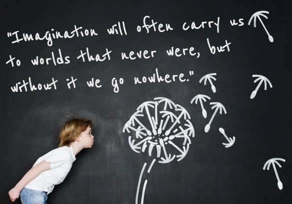 Imagination Quotes imagination will often carry us to world that never were but without it we go nowhere