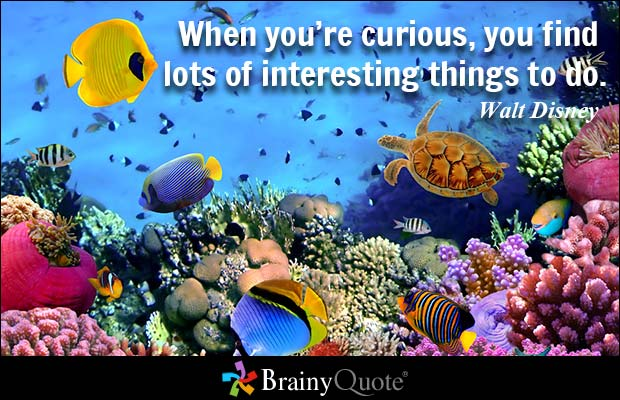 Imagination Quotes when you re curious you find lots of interesting things to do