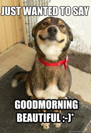 Just wanted to say good morning beautiful Good Morning Memes 41 hilarious good morning meme pictures & images picsmine