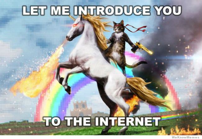 Let Me Introduce You To The Internet Internet Meme