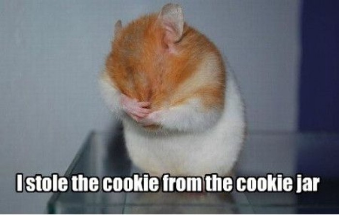 Meme i stole the cookie from the cookie jar Funny Cookie
