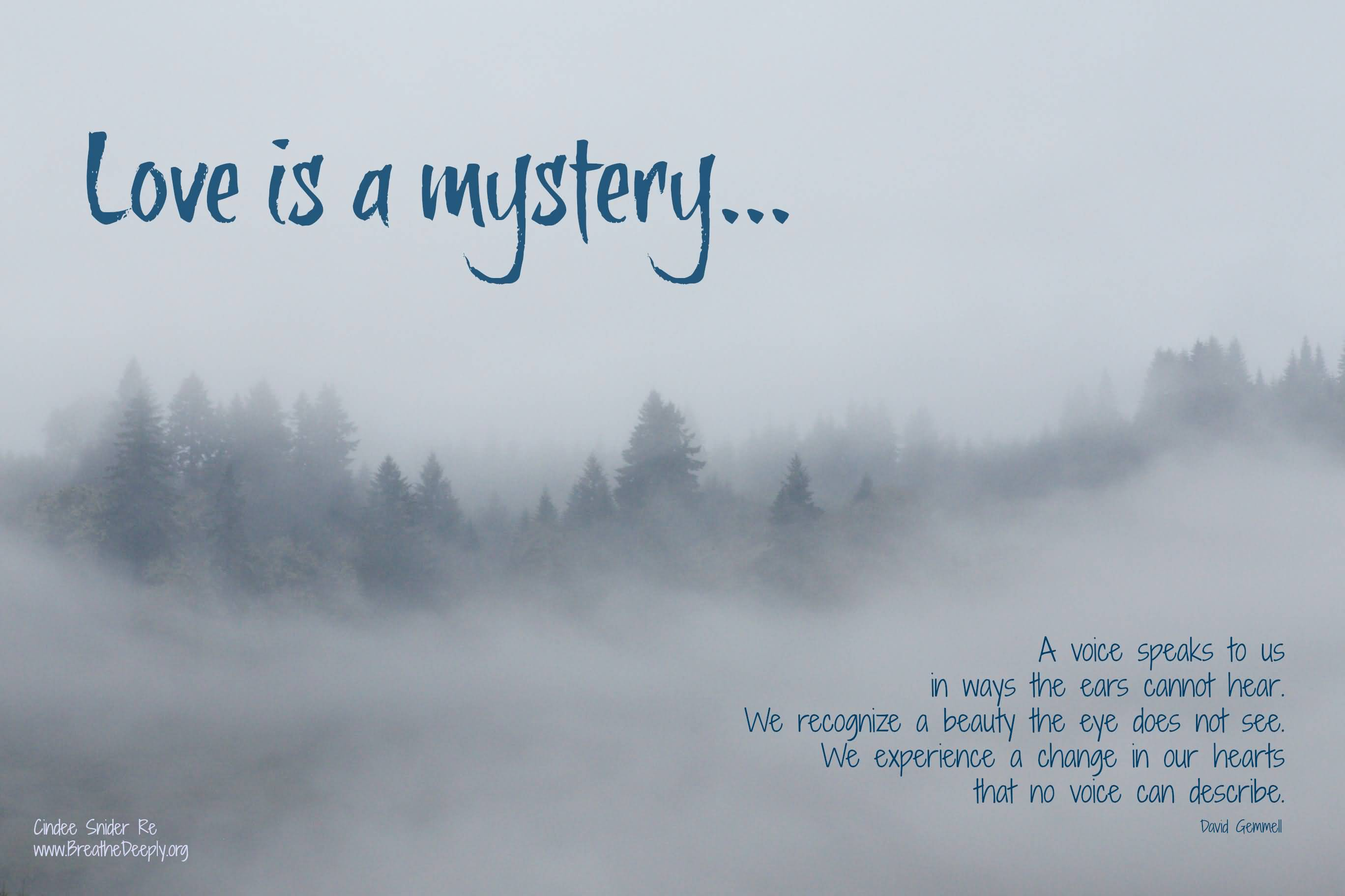 "no ones a mystery Here is another text in a series of posts on how to read like a writer this time it's a work of fiction, elizabeth tallent's very short story ""no one's a mystery."