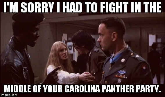 Party Meme I'm sorry i had to fight in the middle of your carolina panther party