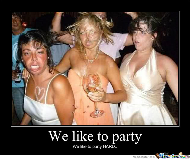 Party Meme we like to party we like to party hard