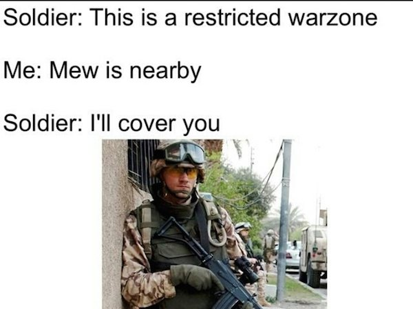 Pokemon Go Memes Soldier This Is A Restricted Warzone