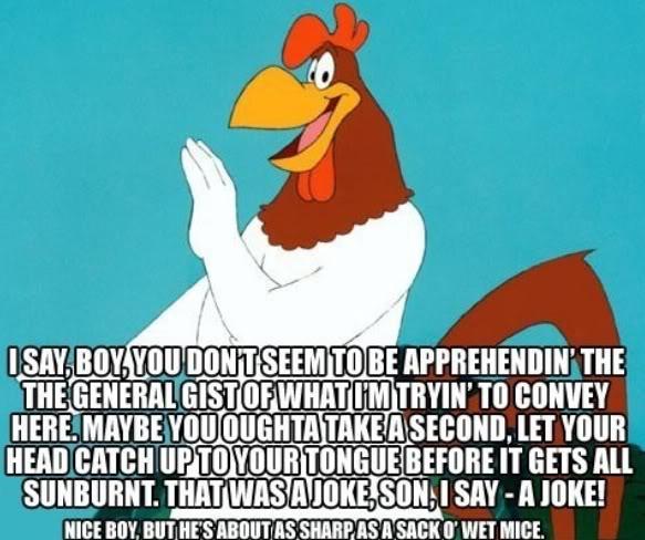 Porky Pig Quotes i say boy you don't seem to be apprehending