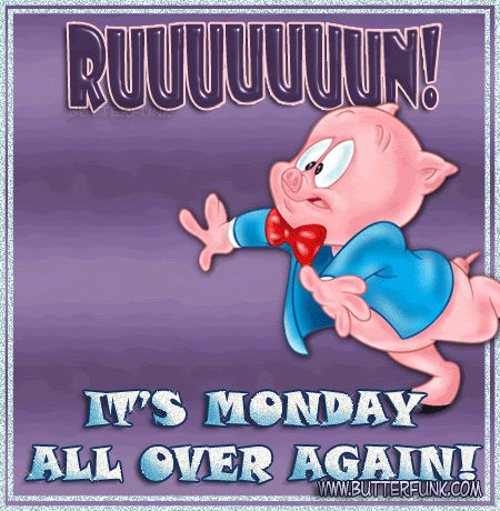 Porky Pig Quotes ruuuuuun it's Monday all over again