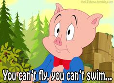 Porky Pig Quotes you can't fly you can't swim