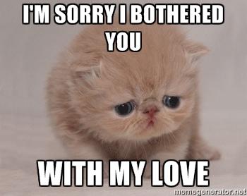 Sad Memes im sorry i bothered you with my love sad memes im sorry i bothered you with my love picsmine,Sad Love Memes