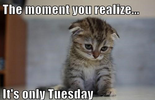 The moment you realize it's only Tuesday Sad Memes