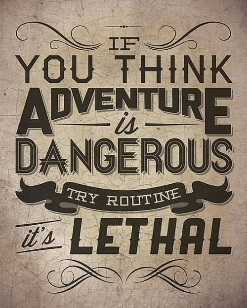 Thrill Quotes if you think an denture is dangerous try routine its