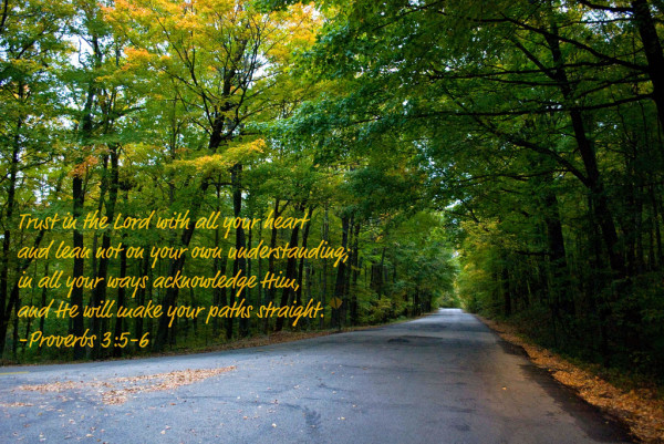 Trust Quotes Trust In The Lord With All Your Heart And Lean Not On Your Own Understanding