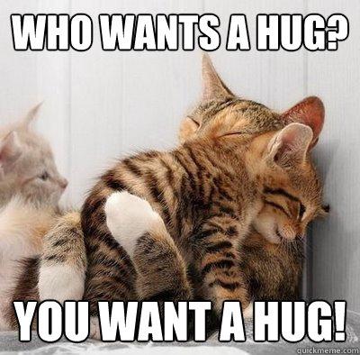 Who wants a hug you want a hug Hug Memes