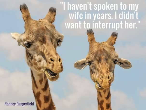 Wife Quotes I haven't spoken to my wife in years. I didn't want to interrupt her. Rodney Dangerfield