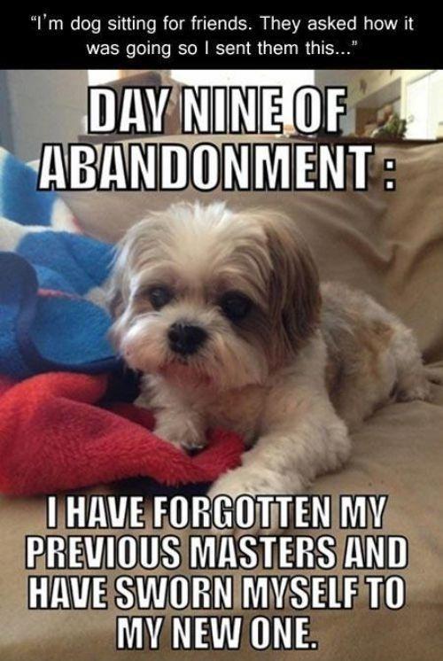 abandonment sayings day nine of abandonment