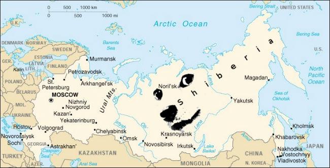 aortic ocean Siberia doge meme