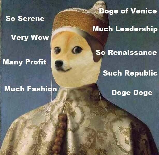 doge meme so serene doge of venice very wow many profit much fashion