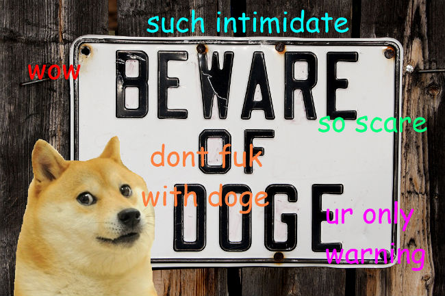 doge meme such intimidate wow beware of doge