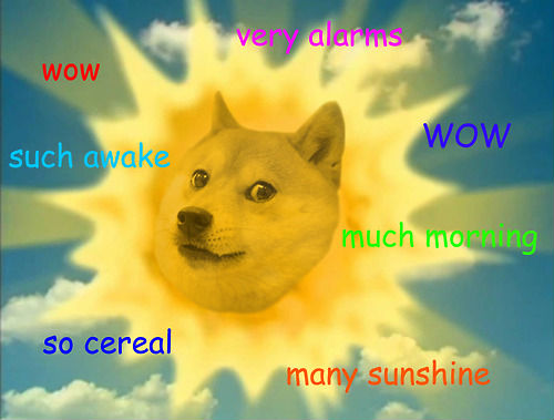 doge meme very alarms wow such awake wow much morning