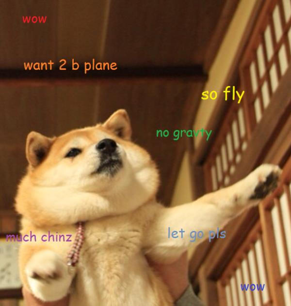 doge meme wow want to b plane so fly no gravity