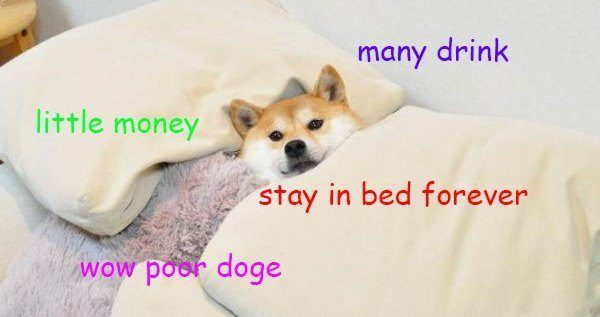 many drink little money stay in bed forever doge meme