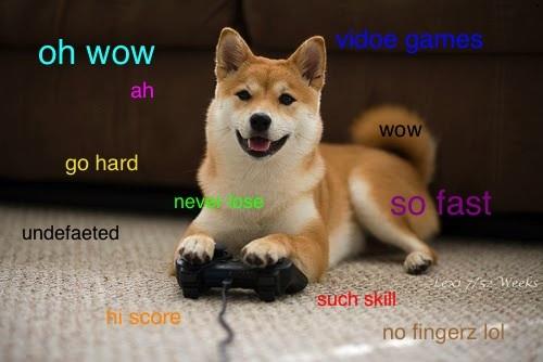 oh wow video games ah go hard wow doge meme