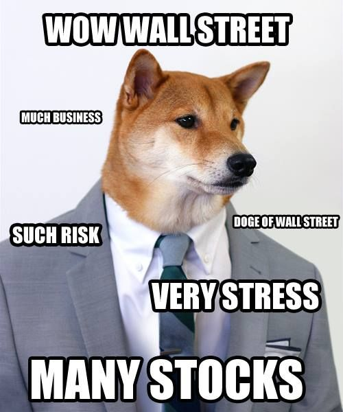 wow wall street much business doge meme