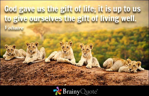 017 Voltaire Quotes