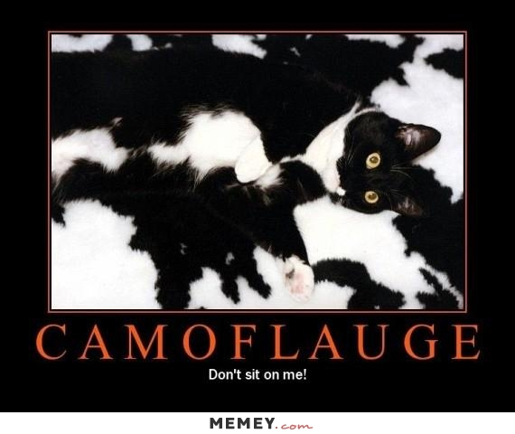 Camoflauge Don't sit on me Camouflage Meme