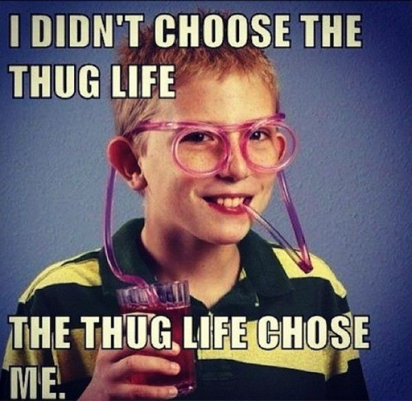 Cool Memes i didn't choose the thug life the thug