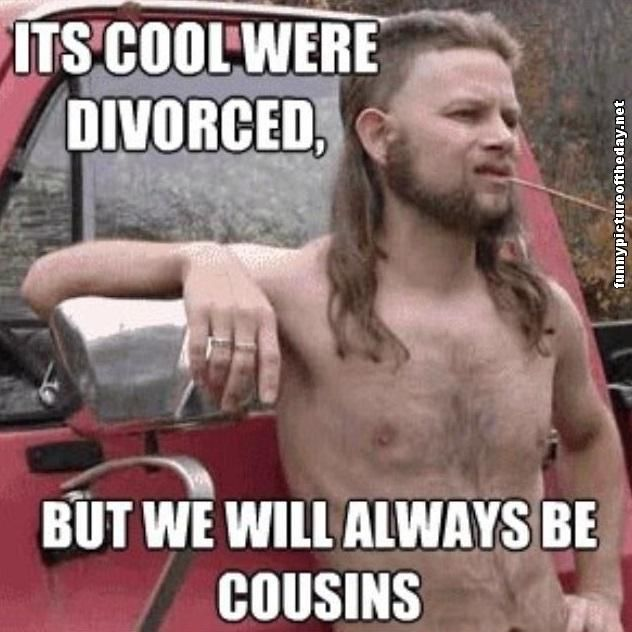 Cool Memes its cool were divorced but we will always be cousins