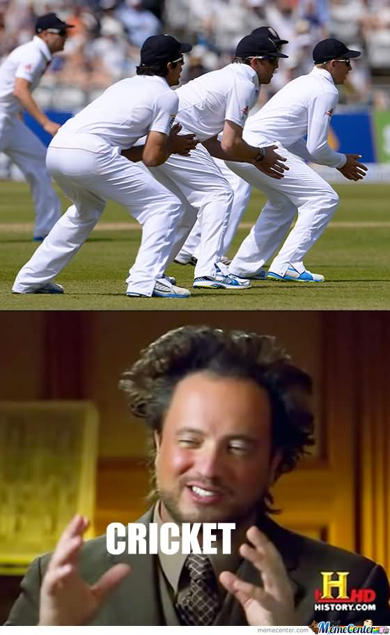 Cricket Cricket Meme
