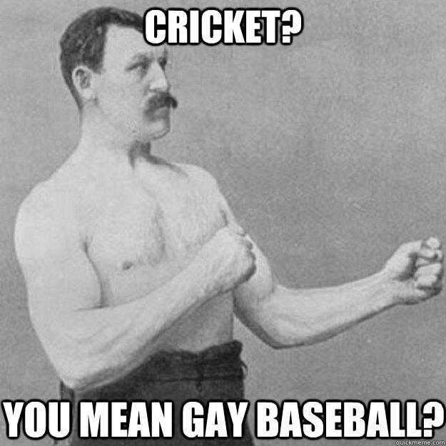 Cricket Meme Cricket you mean gay baseball