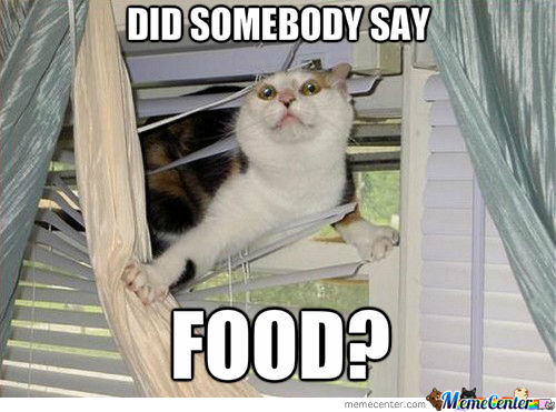 47 Most Funny Food Memes, Images, Gifs, Pictures & Photos ...