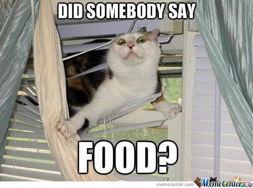 Did somebody say food Food Meme