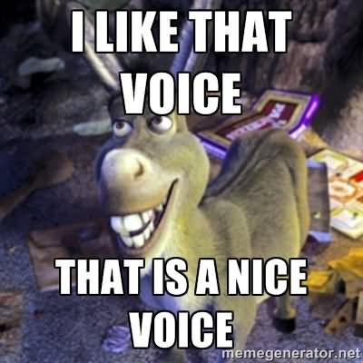 Donkey Memes I like that voice that is a nice voice