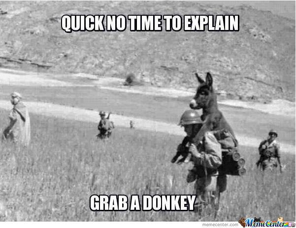 Donkey Meme Quick no time to explain grab a donkey