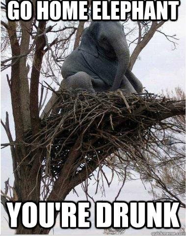 Elephant Meme Go home elephant you re drunk