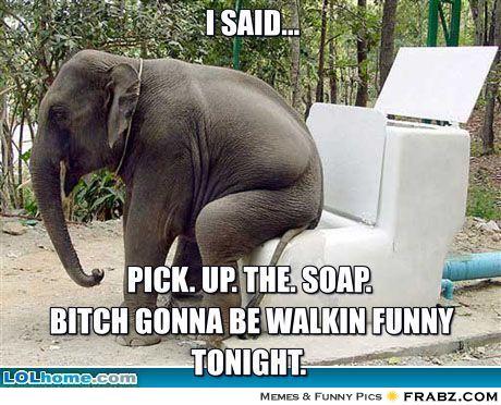 Elephant Meme I said pick up the soap bitch gonna be walkin