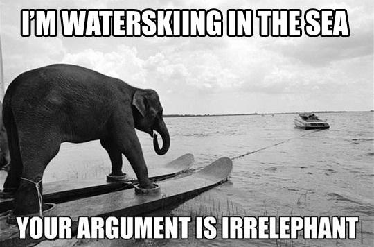 Elephant Meme I'm watersking in the sea